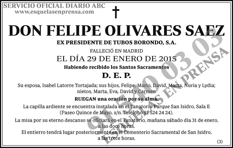 Felipe Olivares Saez